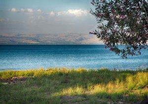 כינרת טבריה sea of gallile