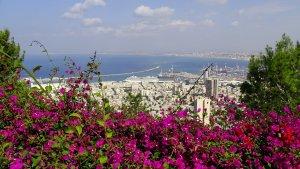 מפרץ חיפה