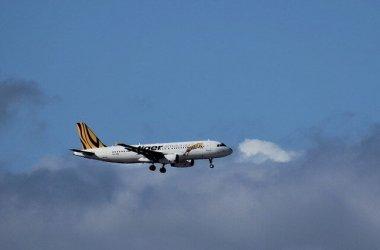 טיסות זולות צייד הטיסות